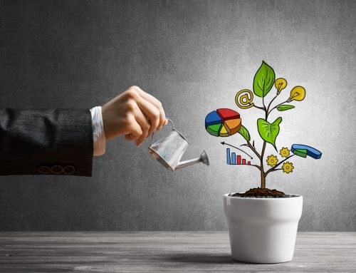 4 Crucial Personal Investment Strategies You Should Follow